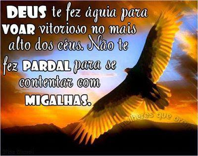 Deus Te Fez Aguia Para Voar Vitorioso No Mais Alto Dos Ceus