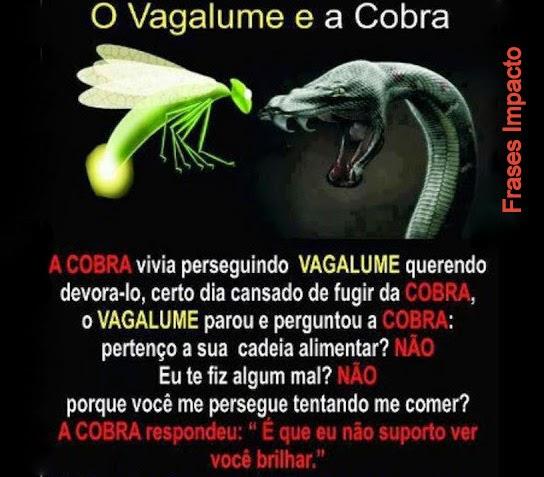 O VAGALUME e a COBRA!