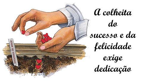 A colheita do sucesso e da felicidade exige dedicaçao!