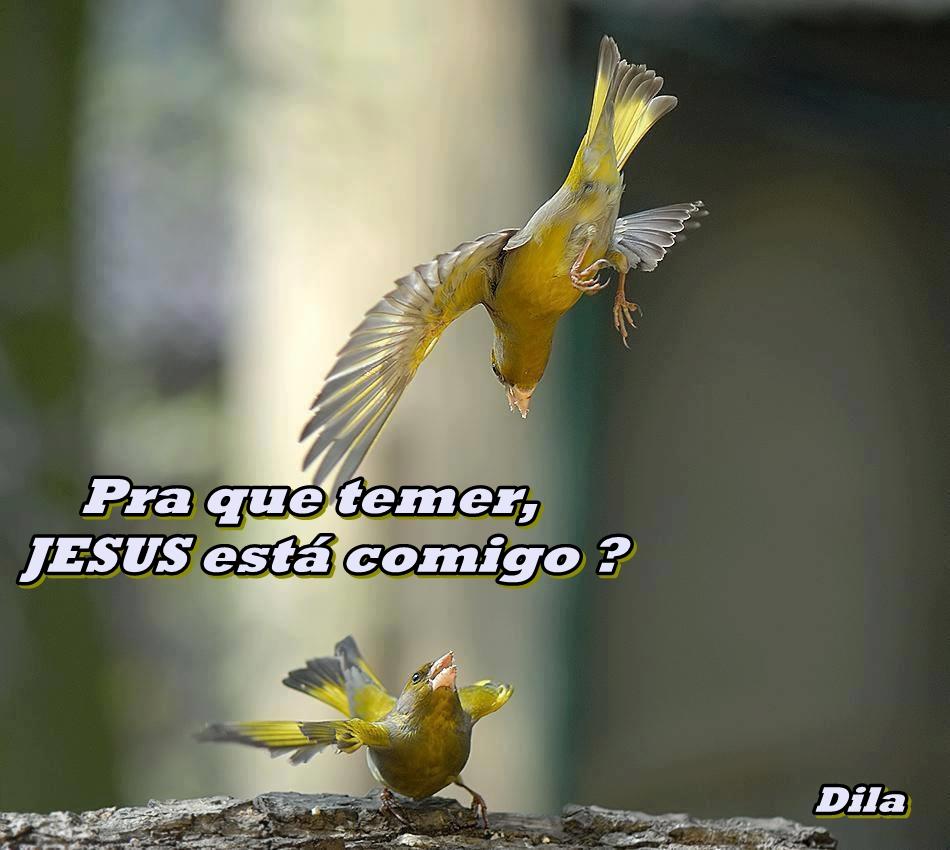 Pra que temer, JESUS esta comigo?