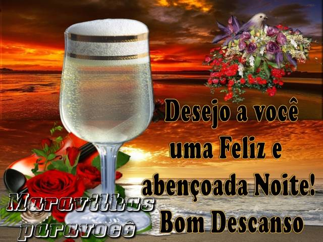 Desejo a voce uma Feliz e abençoada Noite!