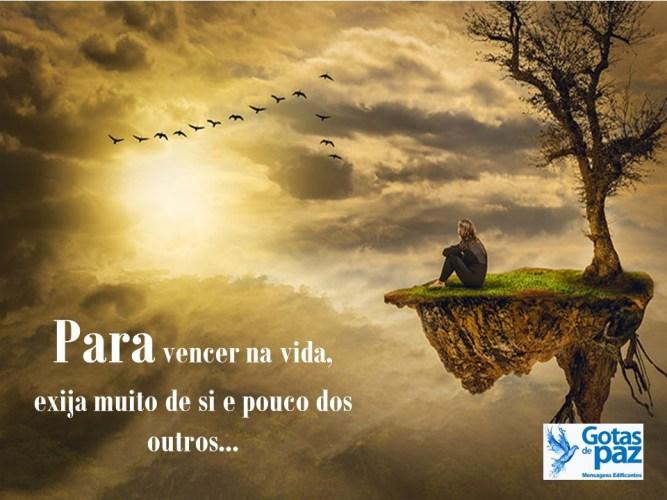 Para vencer na vida. exija muito de si e pouco dos outros…!