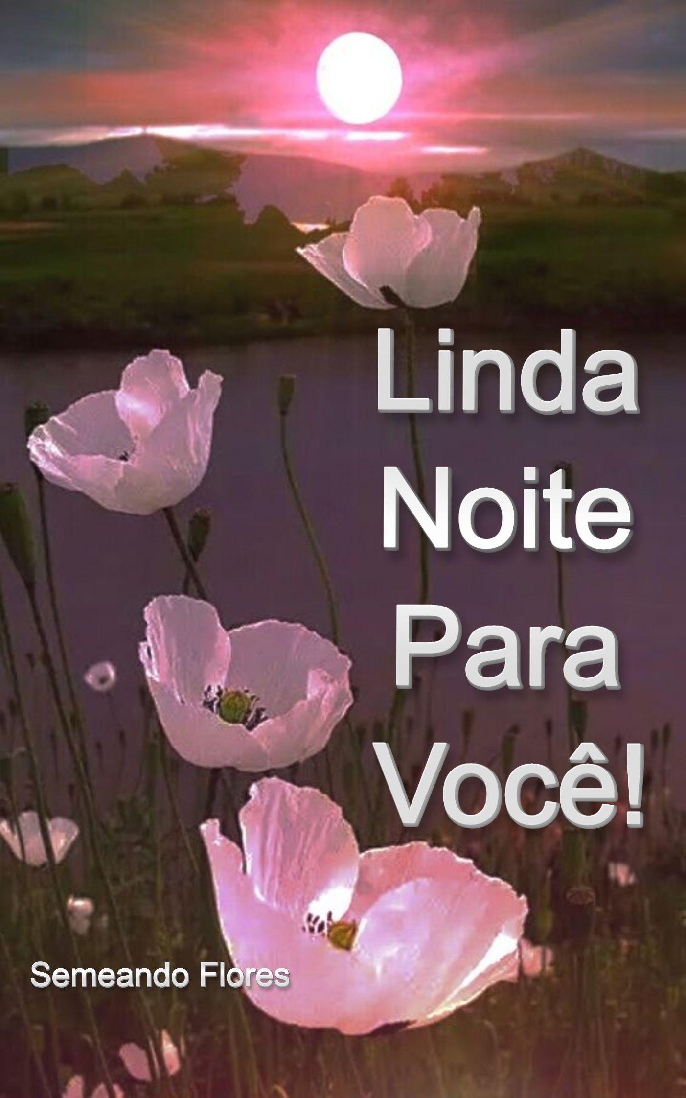 Linda Noite Para Voce!