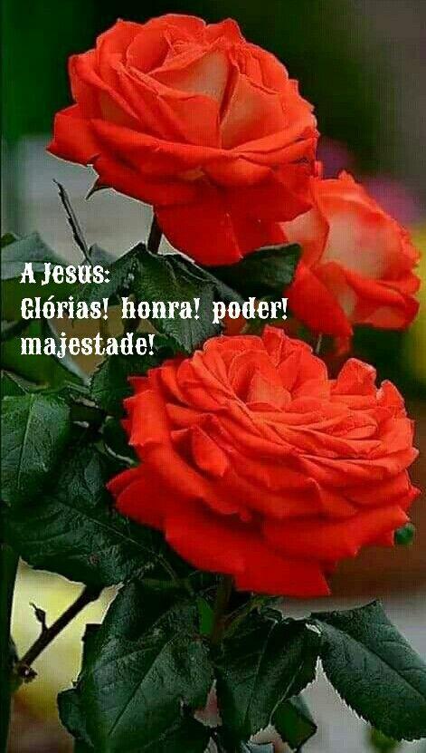A Jesus: Glorias! honra! poder! majestade!