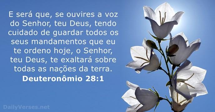 E sera que, se ouvires a vos do Senhor, teu Deus, tendo cuidado de guardar todos os seus mandamentos!