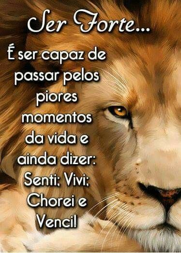 Ser forte… E ser capaz de passar pelos piores momentos da vida e ainda dizer: Sentir; Vivi, Chorei e Venci!
