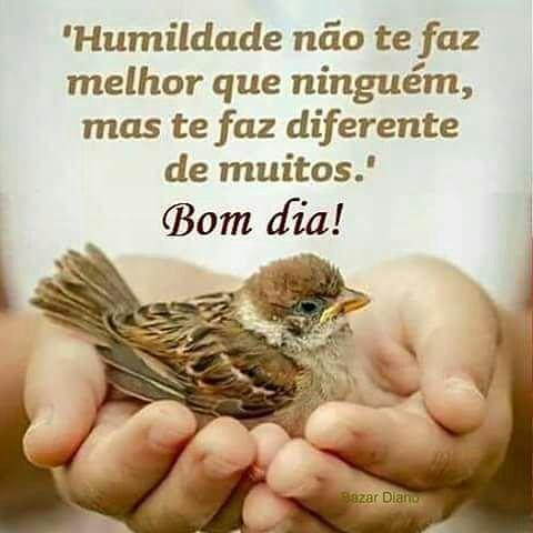 Humildade nao te faz melhor que ninguem, mas te faz diferente de muitos!