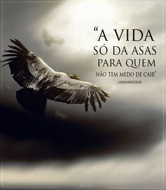 A vida so da asas para quem nao tem medo de cair!