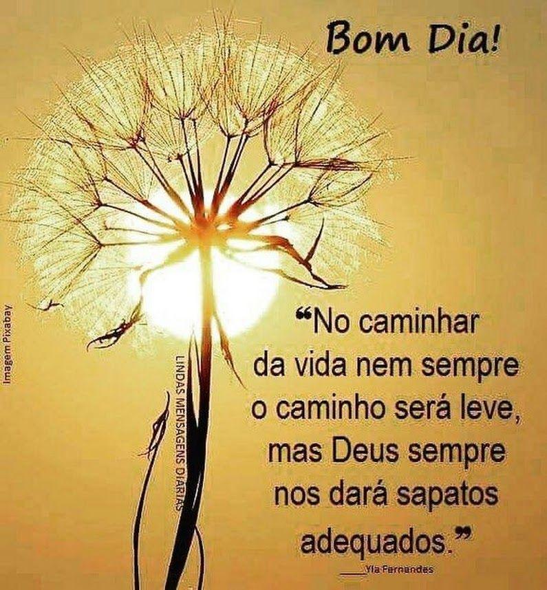 Bom Dia! No caminhar da vida nem sempre o caminho será leve, mas Deus sempre nos dará!