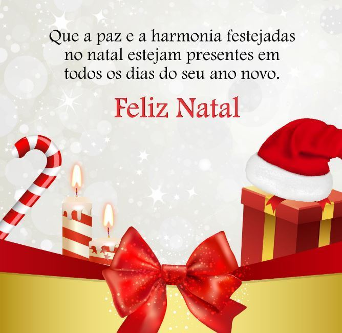 Que a paz e a harmonia festejadas no Natal estejam presentes em todos os dias do seu ano novo!