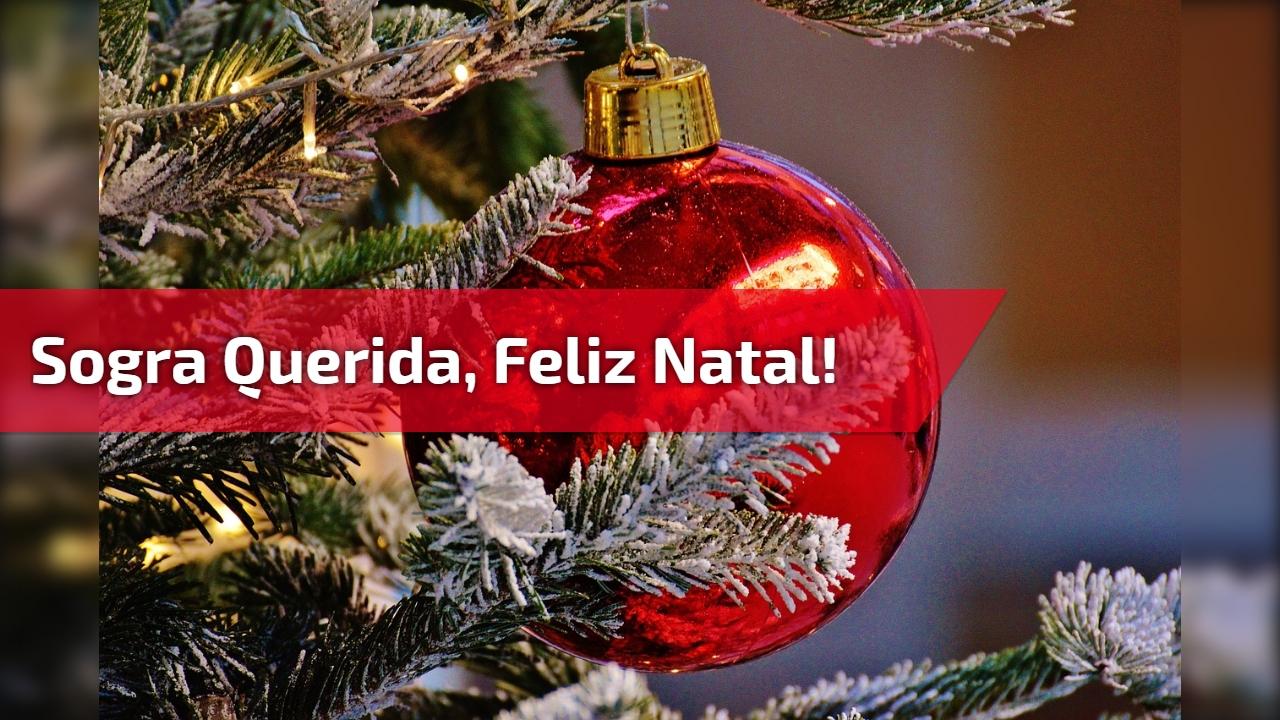 Sogra querida, Feliz Natal!