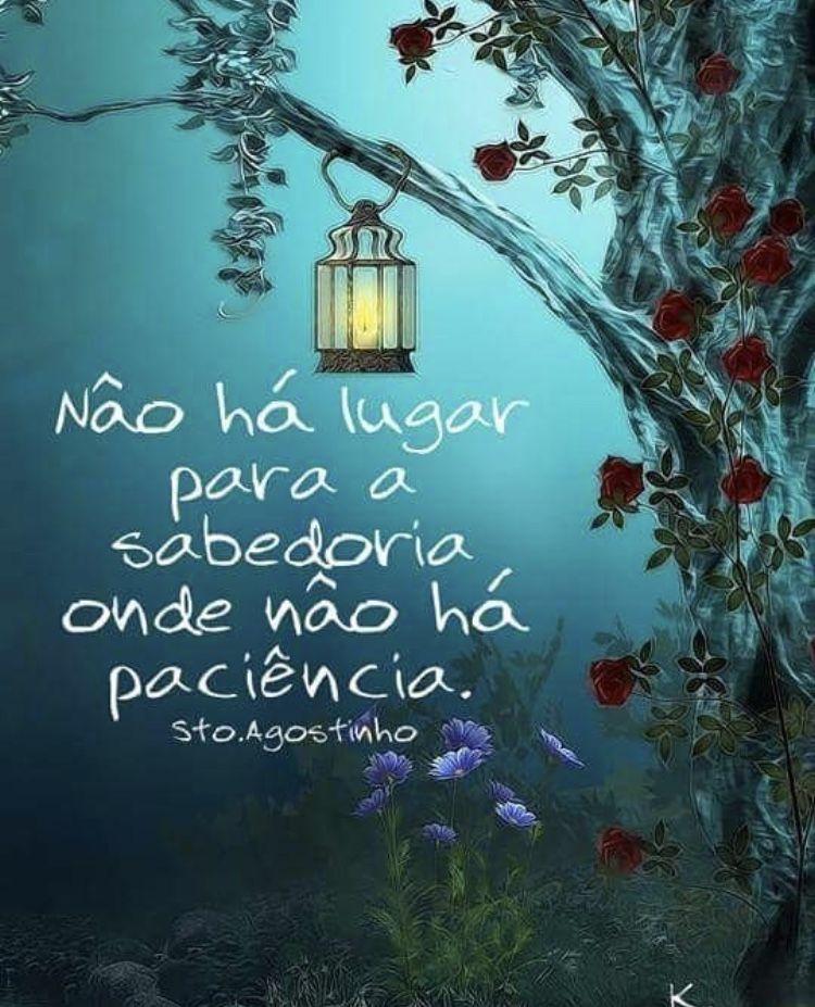 Não há  lugar  para a sabedoria onde não há paciência!