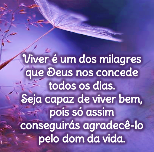 Viver é um dos milagres que Deus nos concede todos os dias. Seja capaz de viver bem, pois só assim.