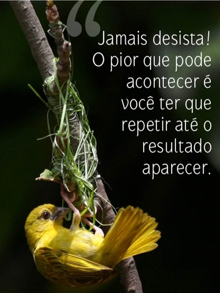 Jamais desista! O pior que pode acontecer é você ter que repetir até o resultado aparecer.