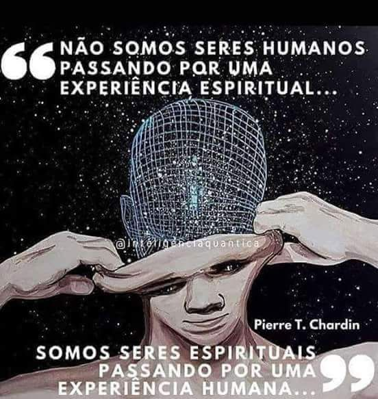Não somos seres humanos passando por uma experiência Espiritual… Somo seres espirituais passando por uma experiência humana…