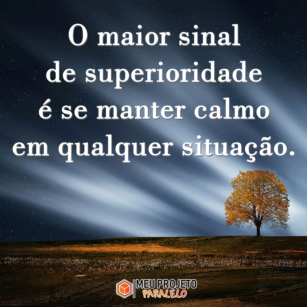 O maior sinal de superioridade é se manter calmo em qualquer situação.