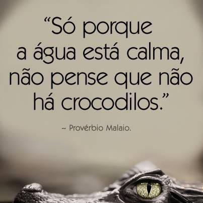 Só porque as águas está calma, não pense que não há crocodilos.