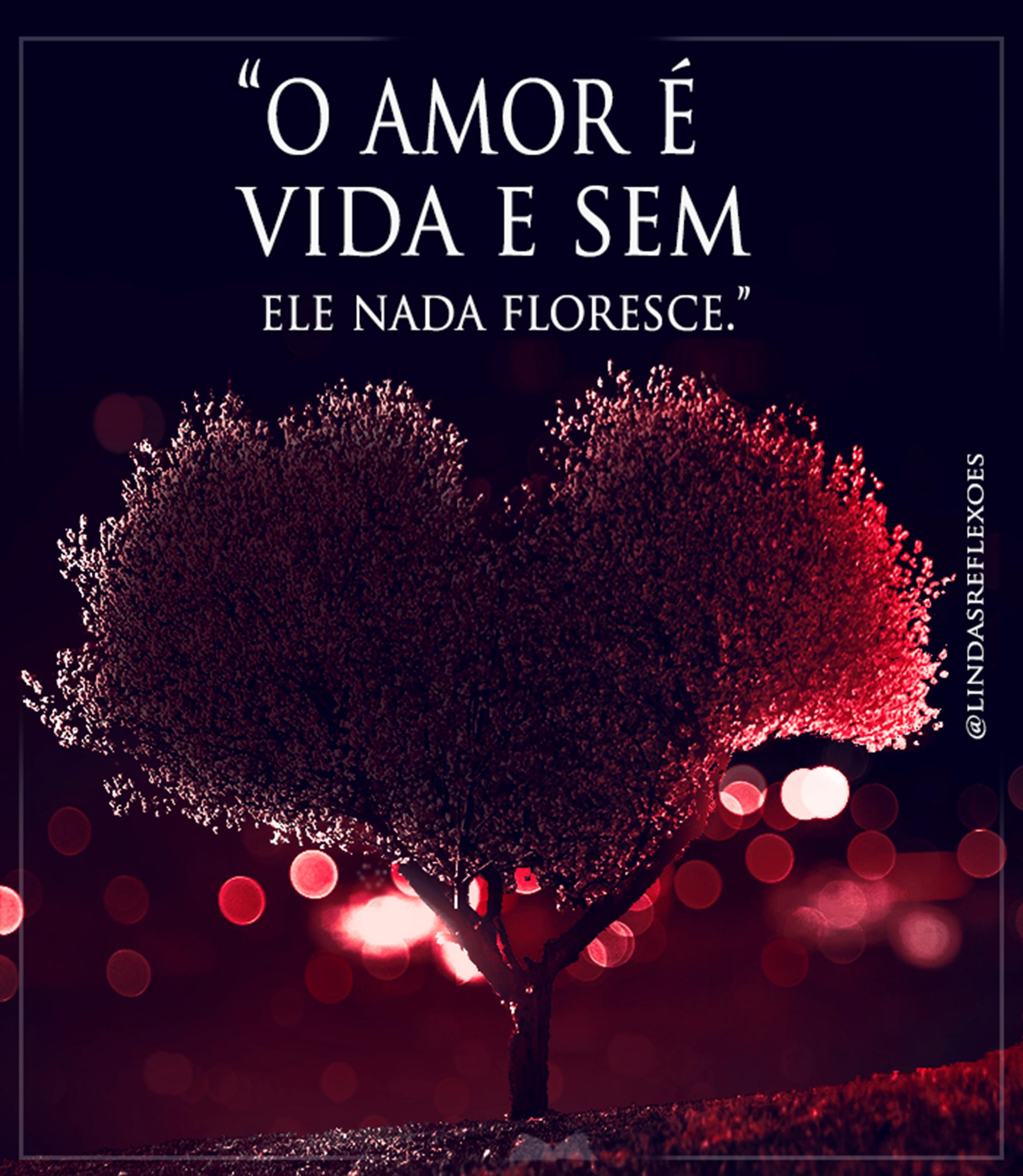 O amor é vida e sem ele nada floresce!