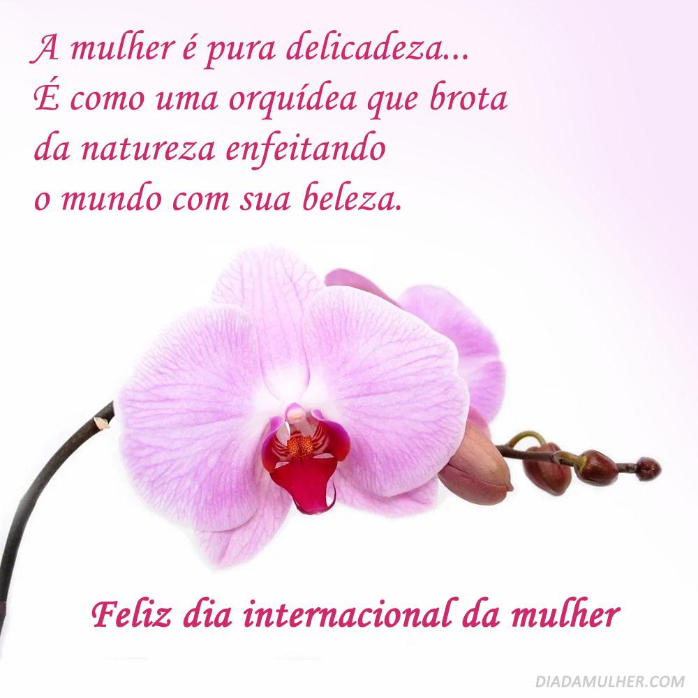 A Mulher é pura delicadeza… É como una orquídea que brota da natureza enfeitando o mundo com sua beleza.