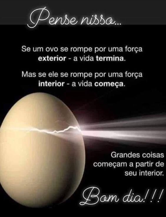 Pesse nisso… Se um ovo se rompe por uma força exterior- a vida termina. Mas se ele se rompe por uma força interior- a vida começa.