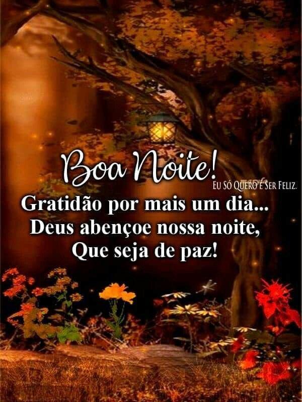 Boa Noite! Gratidão por mais um dia… Deus abençoe nossa noite, Que seja de paz!