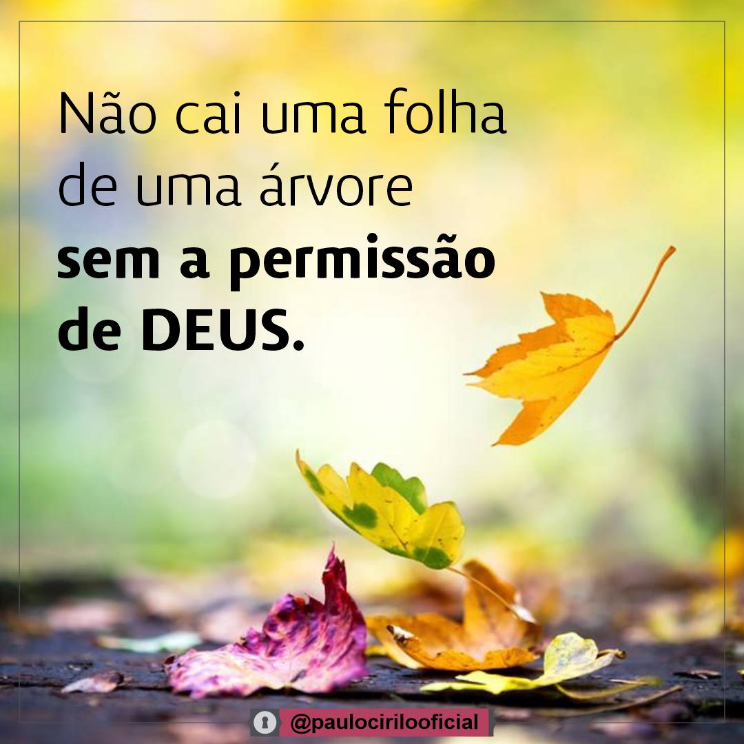 Não cai uma folha de uma árvore sem a permissão de Deus.